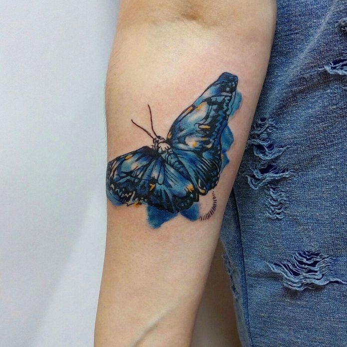 тату бабочка на руке