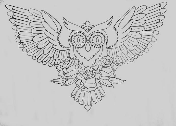 эскиз сова для груди чб