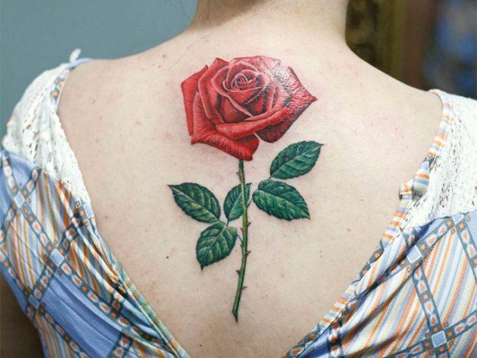 Красная роза тату