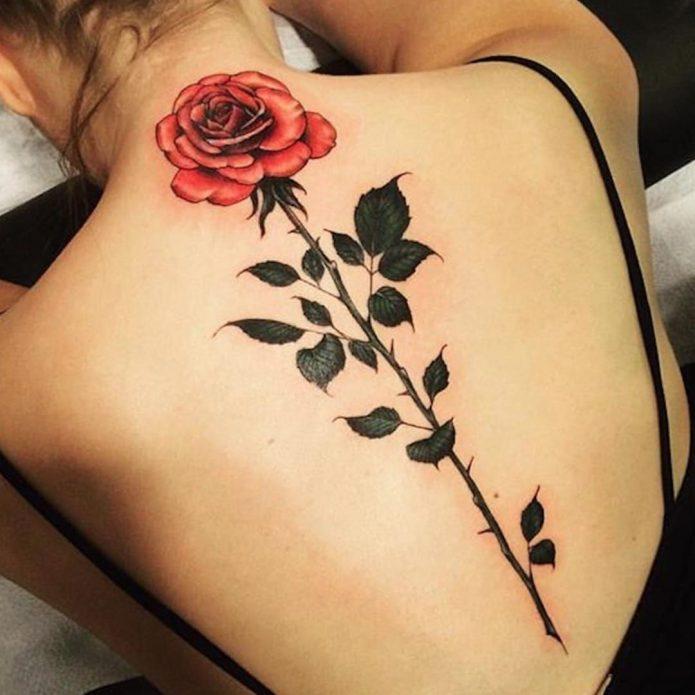 Красная роза татуировка