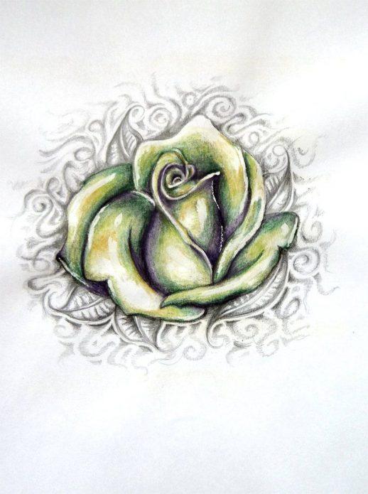 Эскиз зелёная роза