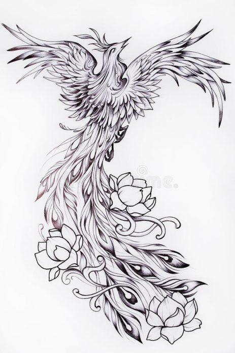 жар птица, феникс чб тату, эскизы для девушек